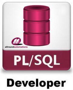 PL/SQL Developer Image