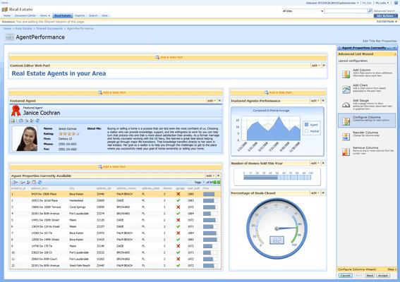 DataParts for SharePoint 2007 Image